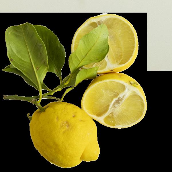 Limoni.png