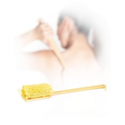 Natural sponge shower brush